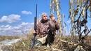 Я и гуси на кукурузном поле! Охота на гуся. Весенняя охота на гуся с чучелами,с манком на гуся.