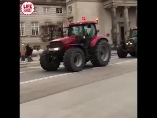 А вот кадры протестного марша на тракторах в Дании. Фермеры протестуют против массового уничтожения норок.