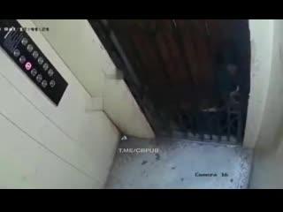 21+ В Индии детские игры с лифтом закончились трагедией