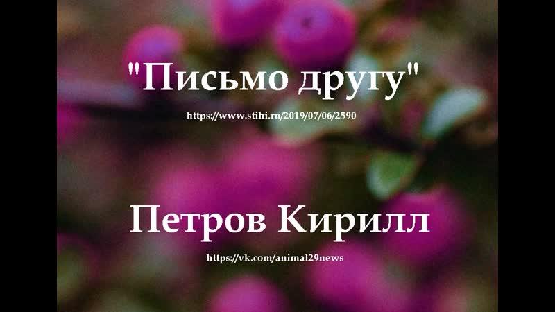 приют для бездомных собак Милосердие г. Архангельск п. Катунино. ул. Летчика Панкова 6