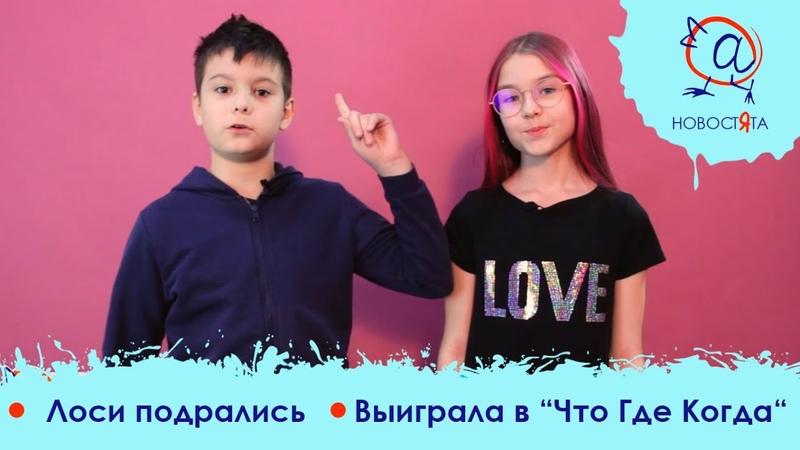 Телепроект Новостята канал ОТВ Лоси подрались из за соли Станет больше школ и детсадов