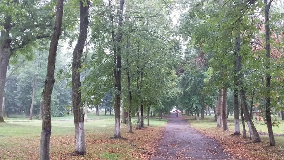 Перковичский парк