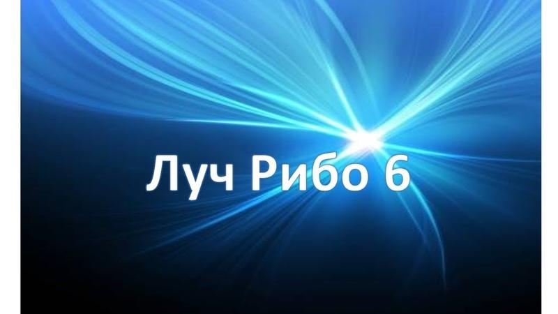 Учение Аркадия Петрова Древо Жизни Луч Рибо 6