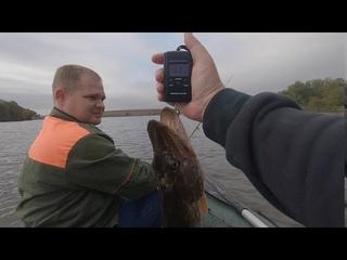 Три щуки и окунь, осень удивляет  Взял 5 кг рыбы