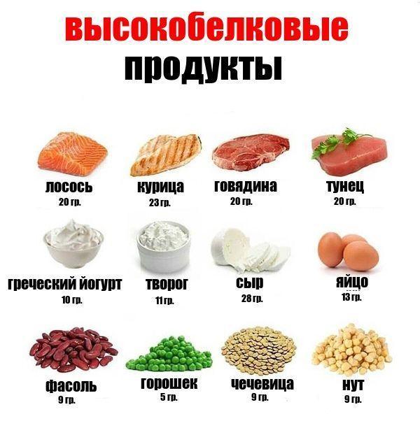 картинки продуктов с большим содержанием белка области применения этого