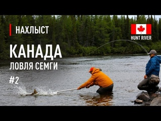 #2 Ловля СЕМГИ в КАНАДЕ река Hunt River / #2 Atlantic Salmon fly fishing in Hunt River, Canada.