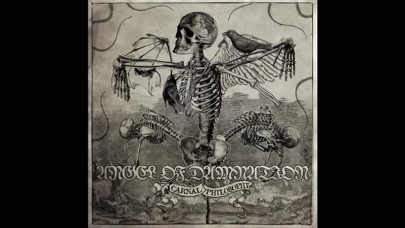 Angel of Damnation Into the Coven of the Damned