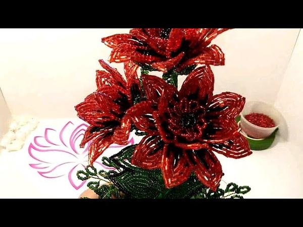 Цветы из бисера Как сделать кровавый АДОНИС ИЗ БИСЕРА МК для начинающих
