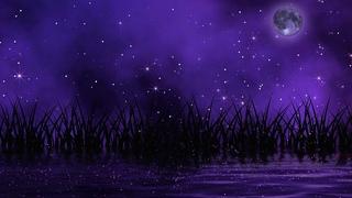 Deepest Sleep Music | Sleep Music 528Hz | Miracle Tone Healing | Positive Energy Sleep | Delta Waves