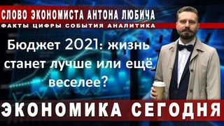 Бюджет 2021: жизнь станет лучше или ещё веселее? Экономист Антон Любич