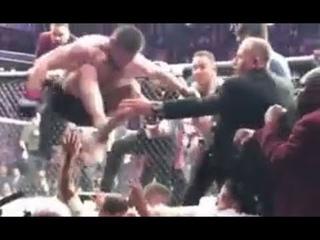 Прыжок Хабиба из октагона на толпу и встречный удар в челюсть