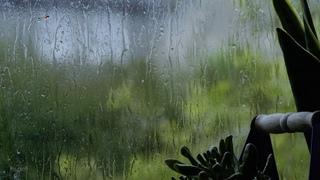 Gentle Rain Sounds on Window in Ireland | Relaxing Rain | Help Sleep, Study, Meditation