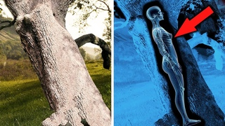 Мистические находки археологов во льду, которые вас удивят! Самые необычные находки археологов