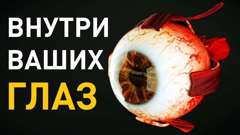 Что происходит внутри глаз