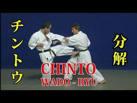WADO - RYU kata CHINTO Bunkai 和道流 形 分解 (チントウ)
