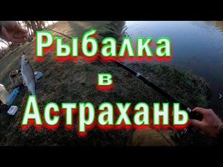 Рыбалка в Астрахани на спиннинг май