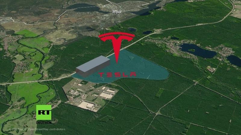 Rodung hat begonnen Tesla fällt Hunderte Bäume in Brandenburg trotz ausstehender Genehmigung
