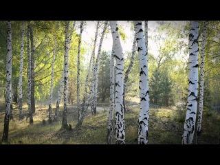 """Небольшая осенняя видеозарисовка + тест слайдера Konova K3. Музыка: Иван Смирнов """"Встреча"""""""