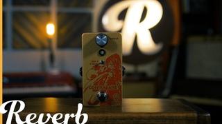 Walrus Audio Contraband Fuzz | Reverb Demo Video