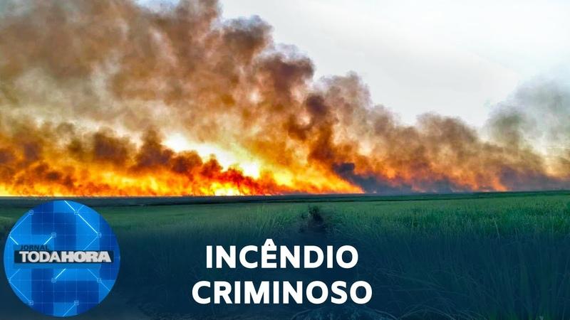 Investigação conclui que fogo no Pantanal foi criminoso