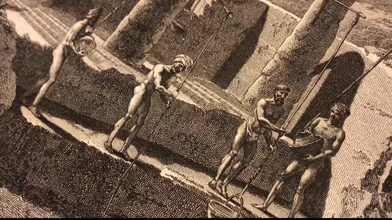 «Описание Египта, или Сборник наблюдений и исследований, которые были сделаны в Египте во время экспедиции французской армии»