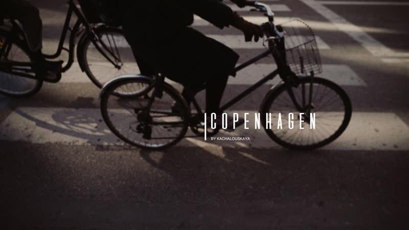 Копенгаген | Красивая Таня | Чайки