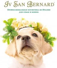 Косметика для собак ив сан бернард официальный сайт