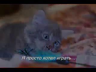 Страшная история про малютку Мышкина