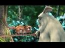 новые мультики 2017 смотреть онлайн смешные мультфильмы для детей