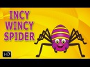 Incy Wincy Spider Nursery Rhyme with Lyrics Cartoon Animation Rhymes Itsy Bitsy Spider