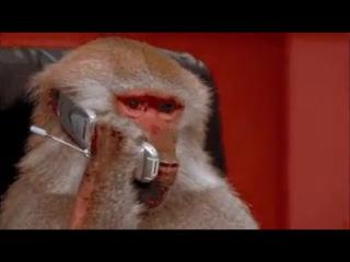 Этот абонент звонил вам 50 раз...........ВЫВОД :не давайте свой номер долба....бам.)))))