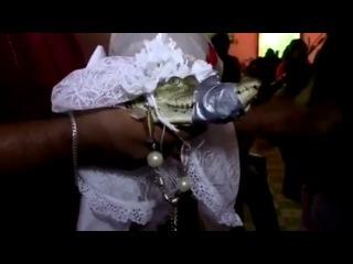 Мэр мексиканского города вступил в брак с крокодилом