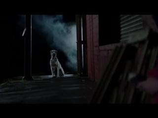 Swedish House Mafia - Save The World самый лучший клип про собак