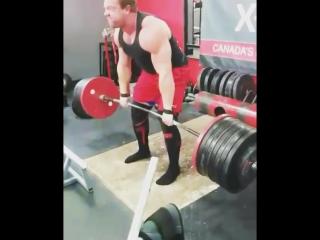 Jimmy paquet (канада), становая тяга без экипировки - 379 кг .