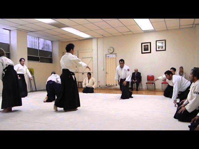 Waka Sensei (Mitsuteru Ueshiba) and Michael Moreno Sensei performing Ai hanmi Katate Dori Iriminage