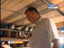 Голуби Владимир Ефремов Глва МО Якушур Бодьинский район 20 августа 2014