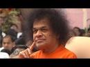 Sai Love No 37 Utter Bliss