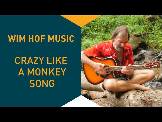 Wim Hof Music : Crazy Like A Monkey Song