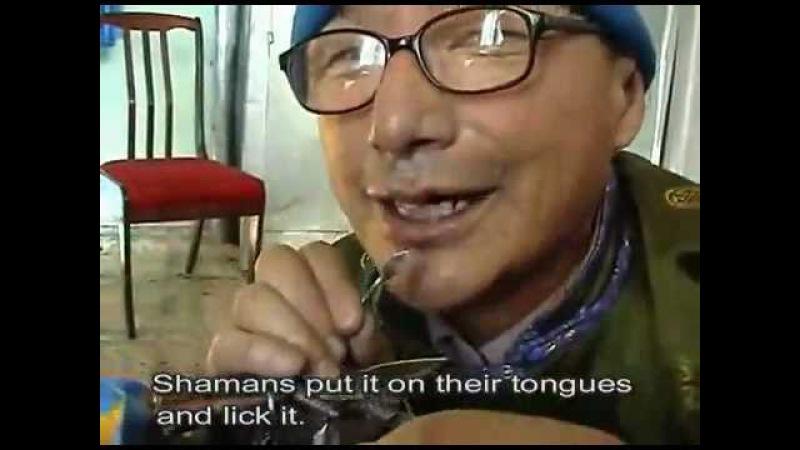 The Paraphernalia of a Buryat Black Shamaness