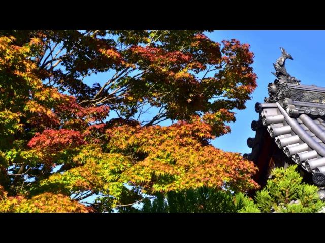 Genko an Temple in Early Autumn