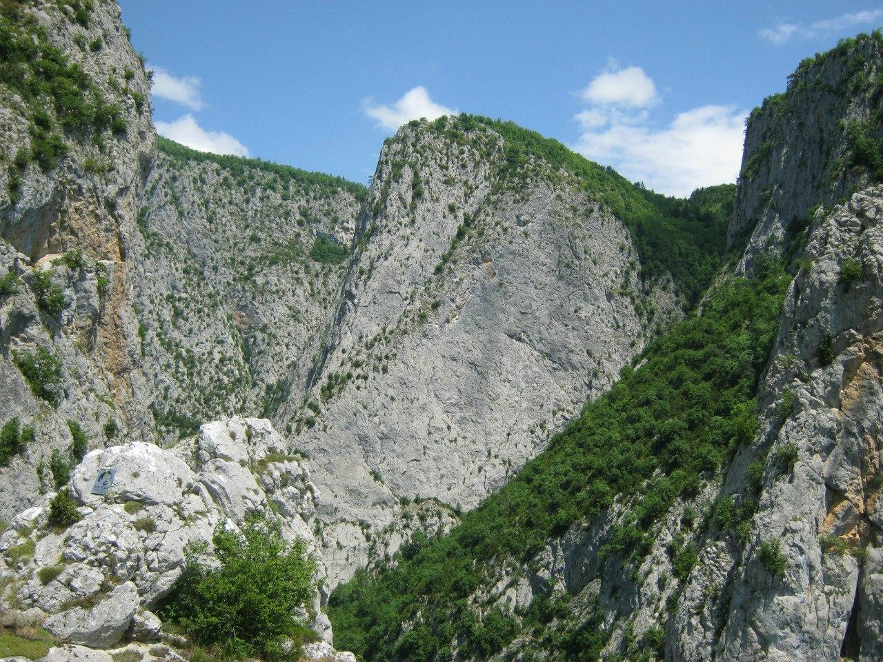 много зелени в черноморском регионе