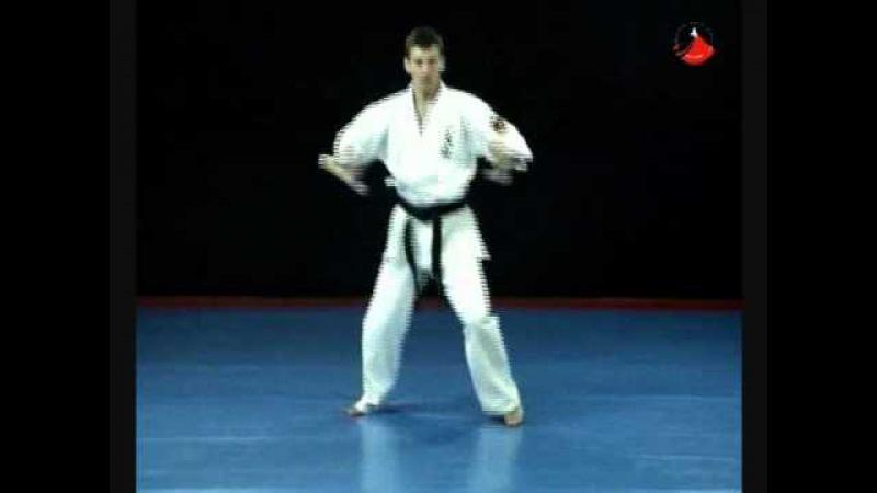 Oyama Karate Taizan Kata