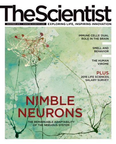 The Scientist November 2016
