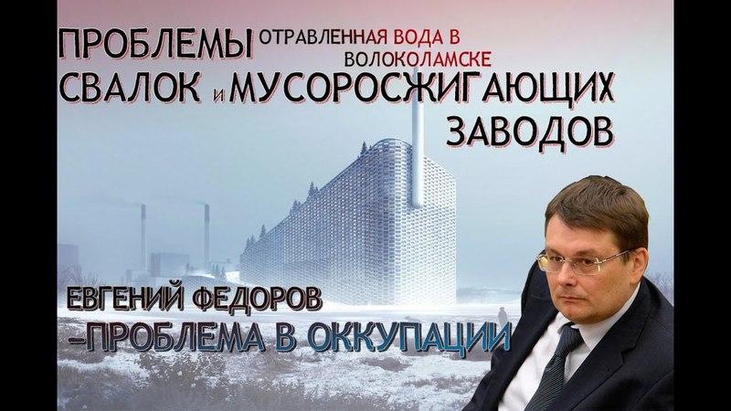 Проблемы свалок и мусоросжигающих заводов Евгений Федоров