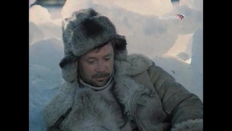 Обыкновенная Арктика 2