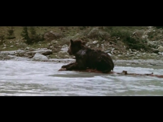 Jean-Jacques Annaud - The Bear (music Audrye Sessions - Relentless)