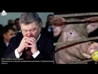Порошенко мудак! Донбасс рулит!