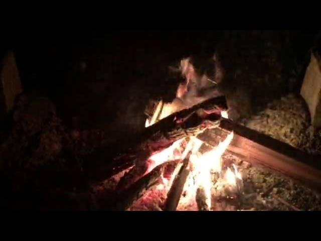 癒し系  焚き火② 炎と虫の声  自然音  Nature Sounds