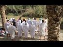 Путь Христа Документальный фильм