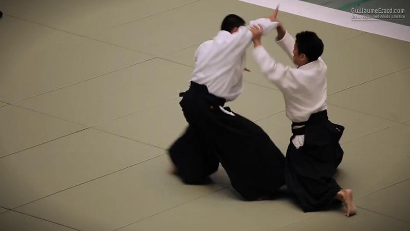 Ueshiba Mitsuteru Waka Sensei - 53rd All Japan Aikido Demonstration (2015)